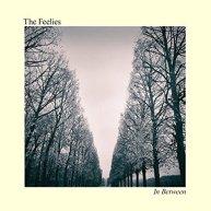 feelies-in-between-cover