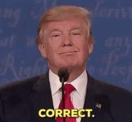 Trump correct! (twitter.com)