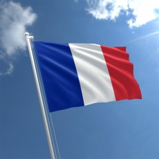 france-flag-std (theflagshop.co.uk)