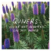 Quivers_YNAOMM (quiversss.bandcamp.com)